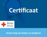 EHBO aan baby's en kinderen e-learning & klassikaal_
