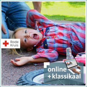 EHBO aan baby's en kinderen e-learning & klassikaal